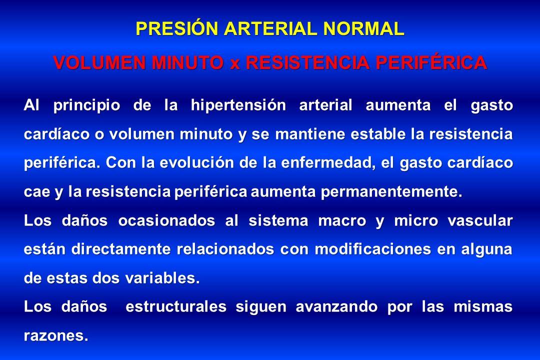 PRESIÓN ARTERIAL NORMAL VOLUMEN MINUTO x RESISTENCIA PERIFÉRICA Al principio de la hipertensión arterial aumenta el gasto cardíaco o volumen minuto y
