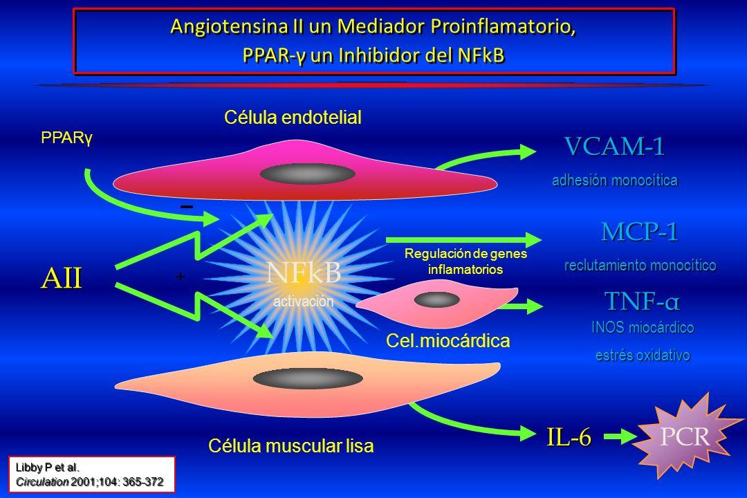 IL-6 VCAM-1 adhesión monocítica NFkB activación Angiotensina II un Mediador Proinflamatorio, PPAR-γ un Inhibidor del NFkB Célula endotelial Célula mus