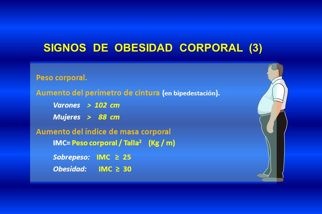 SIGNOS DE OBESIDAD CORPORAL (3) Peso corporal. Aumento del perímetro de cintura ( en bipedestación ). Varones > 102 cm Mujeres > 88 cm Aumento del índ