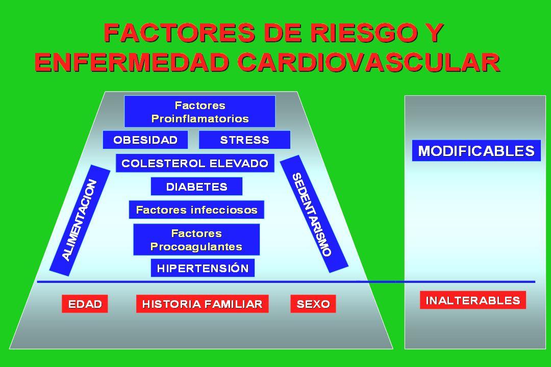 Resistencia periférica Estructura cardiovascular Angiotensinógeno Angiotensina I Angiotensina II Función renal y volemia Actividad noradren.