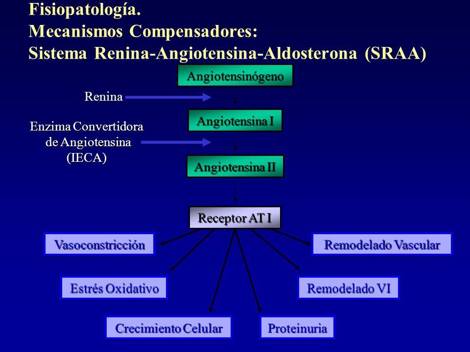 VasoconstricciónVasoconstricción Estrés Oxidativo Crecimiento Celular ProteinuriaProteinuria Remodelado VI Remodelado Vascular Angiotensinógeno Angiot