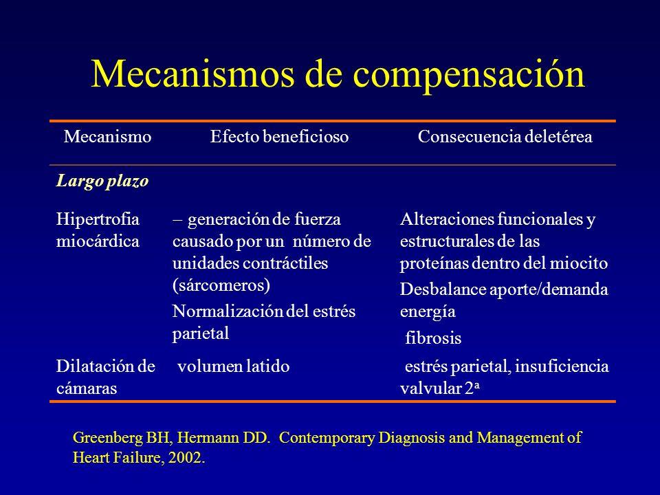 Mecanismos de compensación MecanismoEfecto beneficiosoConsecuencia deletérea Largo plazo Hipertrofia miocárdica generación de fuerza causado por un nú