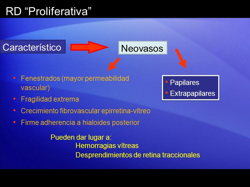 RD Proliferativa Característico Neovasos Papilares Extrapapilares Papilares Extrapapilares Fenestrados (mayor permeabilidad vascular) Fragilidad extre
