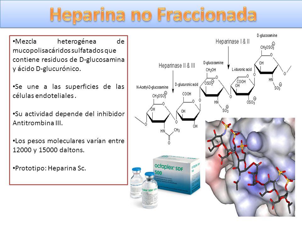Mezcla heterogénea de mucopolisacáridos sulfatados que contiene residuos de D-glucosamina y ácido D-glucurónico. Se une a las superficies de las célul