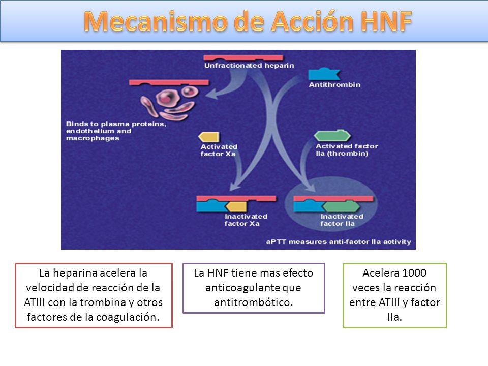 La heparina acelera la velocidad de reacción de la ATIII con la trombina y otros factores de la coagulación. La HNF tiene mas efecto anticoagulante qu
