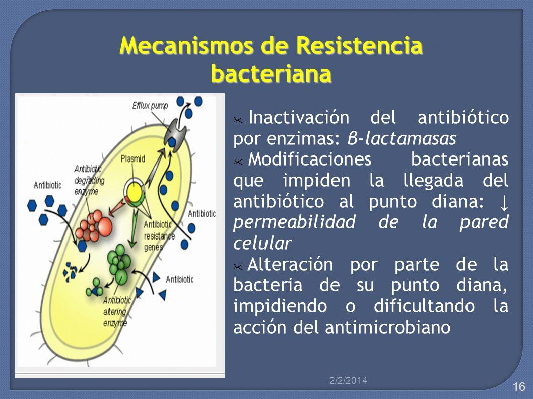 Mecanismos de Resistencia bacteriana Inactivación del antibiótico por enzimas: β-lactamasas Modificaciones bacterianas que impiden la llegada del anti
