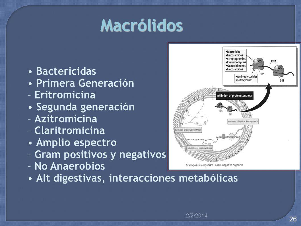 Macrólidos Bactericidas Primera Generación – Eritromicina Segunda generación – Azitromicina – Claritromicina Amplio espectro – Gram positivos y negati