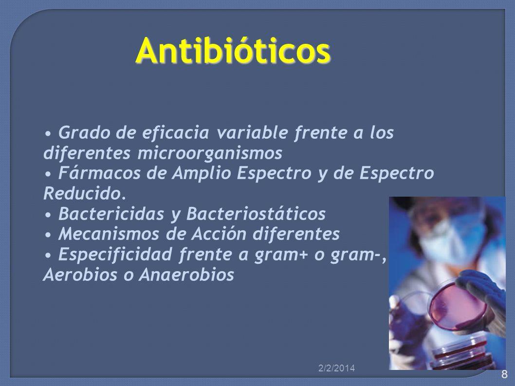 Aminoglucósidos Bactericidas Amplio espectro – Gentamicina – Tobramicina – Amikacina – Neomicina Gram Negativos Aerobios Infecciones Graves Efectos Adversos digestivos, hipersensibilidad, hepatotoxicidad, flebitis, alt renales y auditivas.