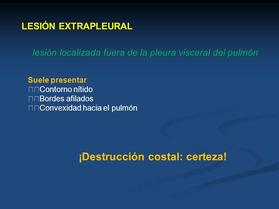LESIÓN EXTRAPLEURAL lesión localizada fuera de la pleura visceral del pulmón Suele presentar Contorno nítido Bordes afilados Convexidad hacia el pulmó