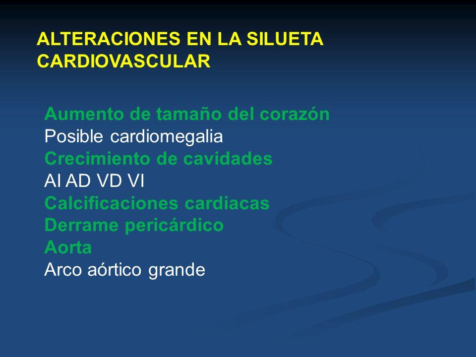 ALTERACIONES EN LA SILUETA CARDIOVASCULAR Aumento de tamaño del corazón Posible cardiomegalia Crecimiento de cavidades AI AD VD VI Calcificaciones car