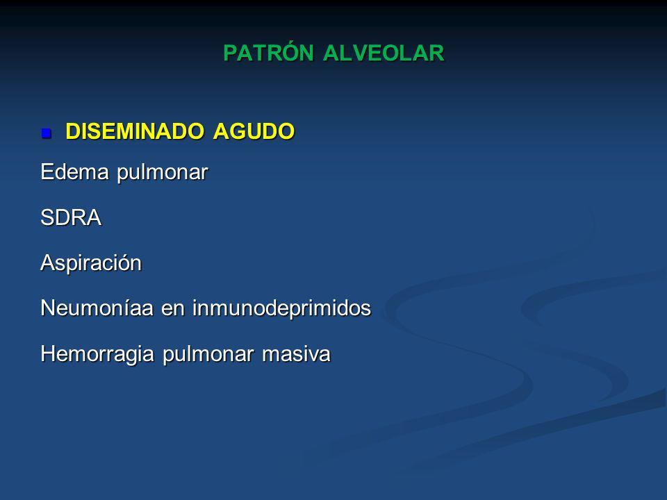 PATRÓN ALVEOLAR DISEMINADO AGUDO DISEMINADO AGUDO Edema pulmonar SDRAAspiración Neumoníaa en inmunodeprimidos Hemorragia pulmonar masiva