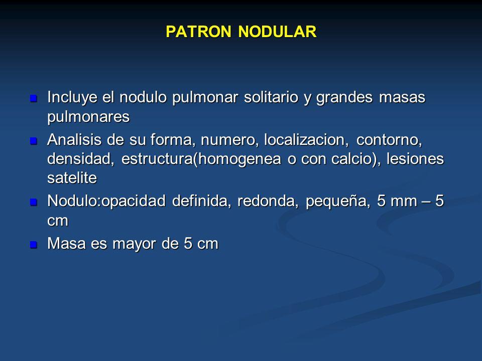 PATRON NODULAR Incluye el nodulo pulmonar solitario y grandes masas pulmonares Incluye el nodulo pulmonar solitario y grandes masas pulmonares Analisi