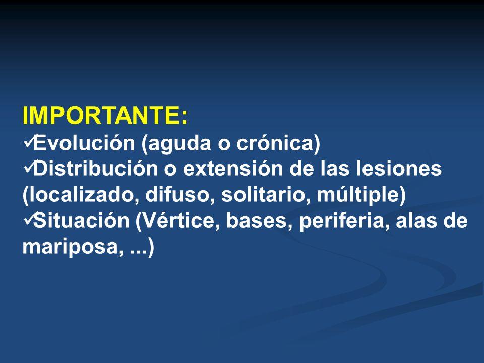 IMPORTANTE: Evolución (aguda o crónica) Distribución o extensión de las lesiones (localizado, difuso, solitario, múltiple) Situación (Vértice, bases,