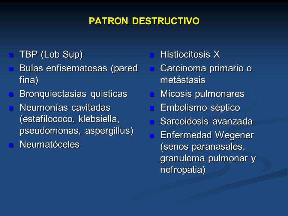 PATRON DESTRUCTIVO TBP (Lob Sup) TBP (Lob Sup) Bulas enfisematosas (pared fina) Bulas enfisematosas (pared fina) Bronquiectasias quisticas Bronquiecta