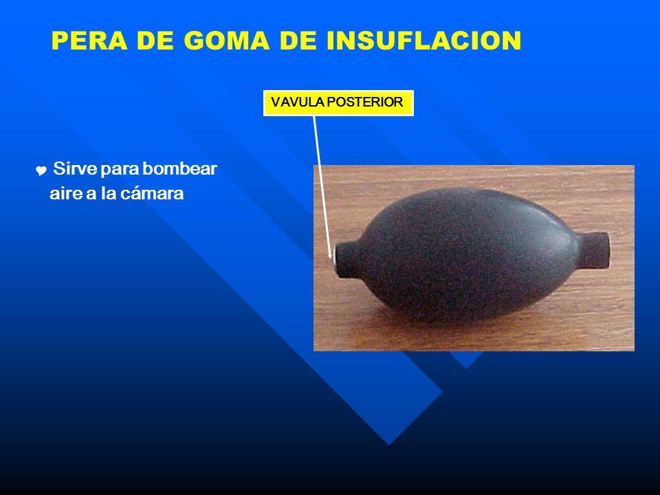 PERA DE GOMA DE INSUFLACION Sirve para bombear aire a la cámara VAVULA POSTERIOR