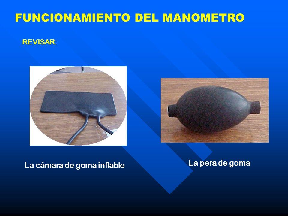 FUNCIONAMIENTO DEL MANOMETRO REVISAR: La cámara de goma inflable La pera de goma