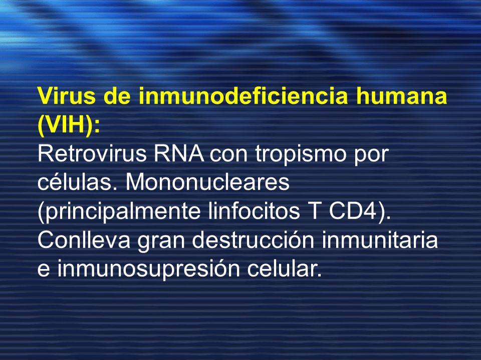 Virus de inmunodeficiencia humana (VIH): Retrovirus RNA con tropismo por células. Mononucleares (principalmente linfocitos T CD4). Conlleva gran destr