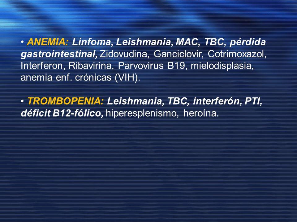 ANEMIA: Linfoma, Leishmania, MAC, TBC, pérdida gastrointestinal, Zidovudina, Ganciclovir, Cotrimoxazol, Interferon, Ribavirina, Parvovirus B19, mielod