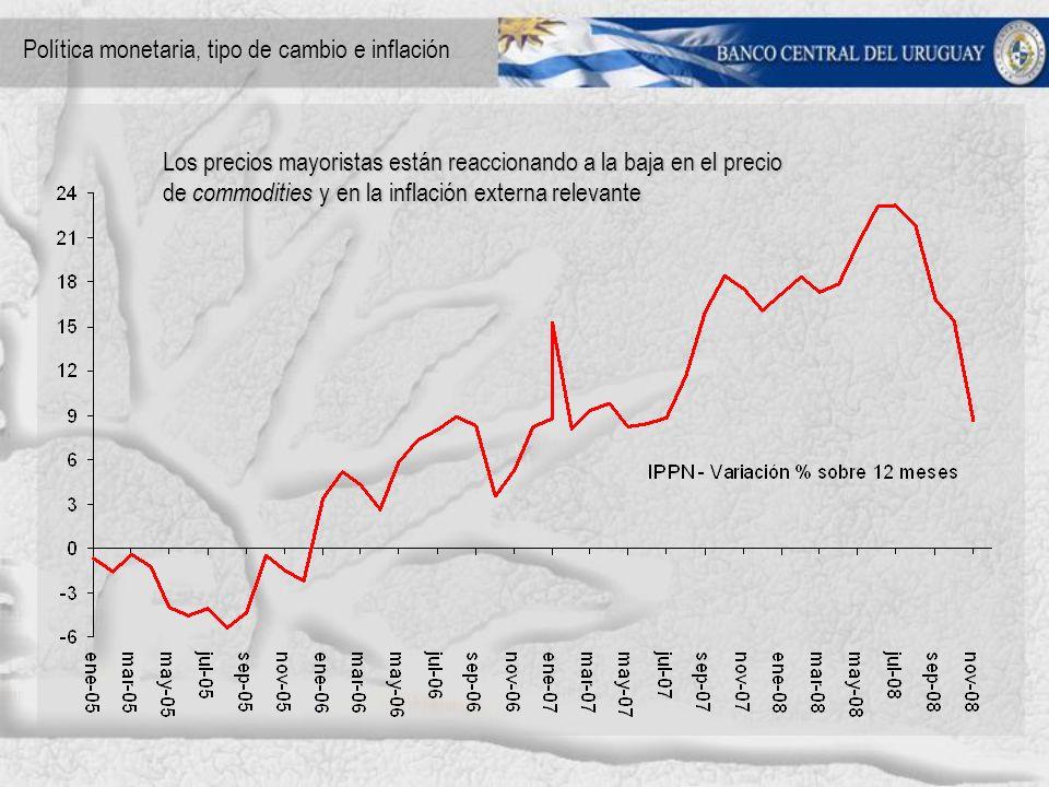 Los precios mayoristas están reaccionando a la baja en el precio de commodities y en la inflación externa relevante Política monetaria, tipo de cambio e inflación