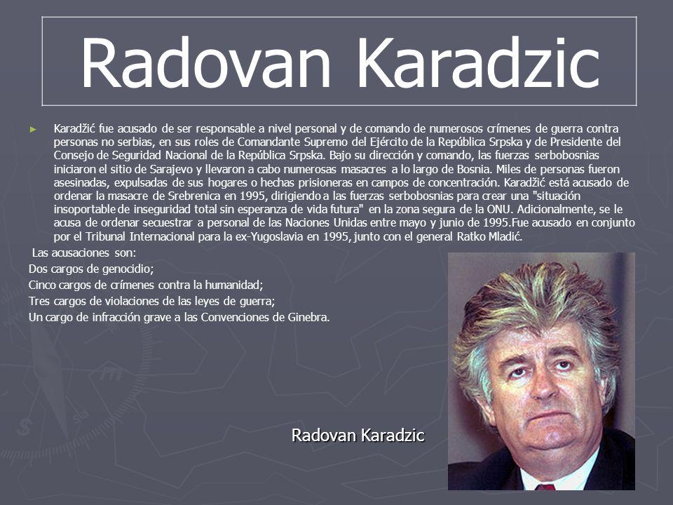 Karadžić fue acusado de ser responsable a nivel personal y de comando de numerosos crímenes de guerra contra personas no serbias, en sus roles de Coma