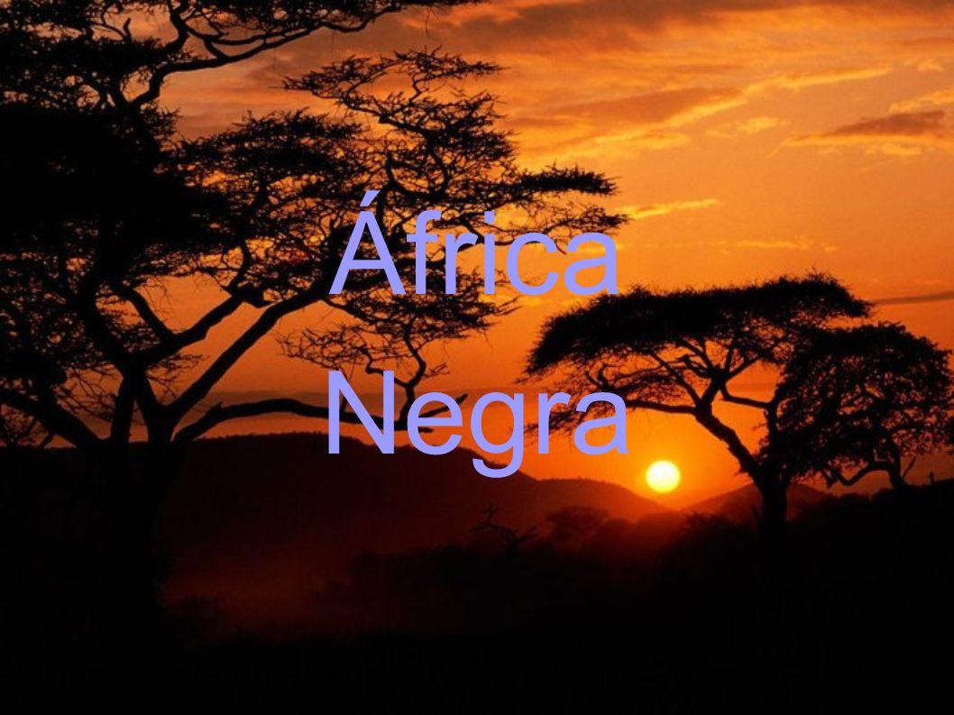 Bibliografía http://sepiensa.org.mx/contenidos/historia_mundo/siglo_xx/ Africa/apartheid/apartheid4.htm http://sepiensa.org.mx/contenidos/historia_mundo/siglo_xx/ Africa/apartheid/apartheid4.htm http://es.wikipedia.org/wiki/Panafricanismo#Factores_del_s urgimiento_del_panafricanismo http://es.wikipedia.org/wiki/Panafricanismo#Factores_del_s urgimiento_del_panafricanismo http://es.wikipedia.org/wiki/Independencia_de_%C3%81fric a http://es.wikipedia.org/wiki/Independencia_de_%C3%81fric a Libro de texto.