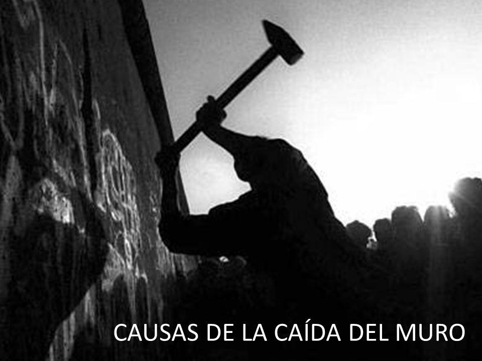 CAUSAS DE LA CAÍDA DEL MURO C CAUSAS DE LA CAÍDA DEL MURO