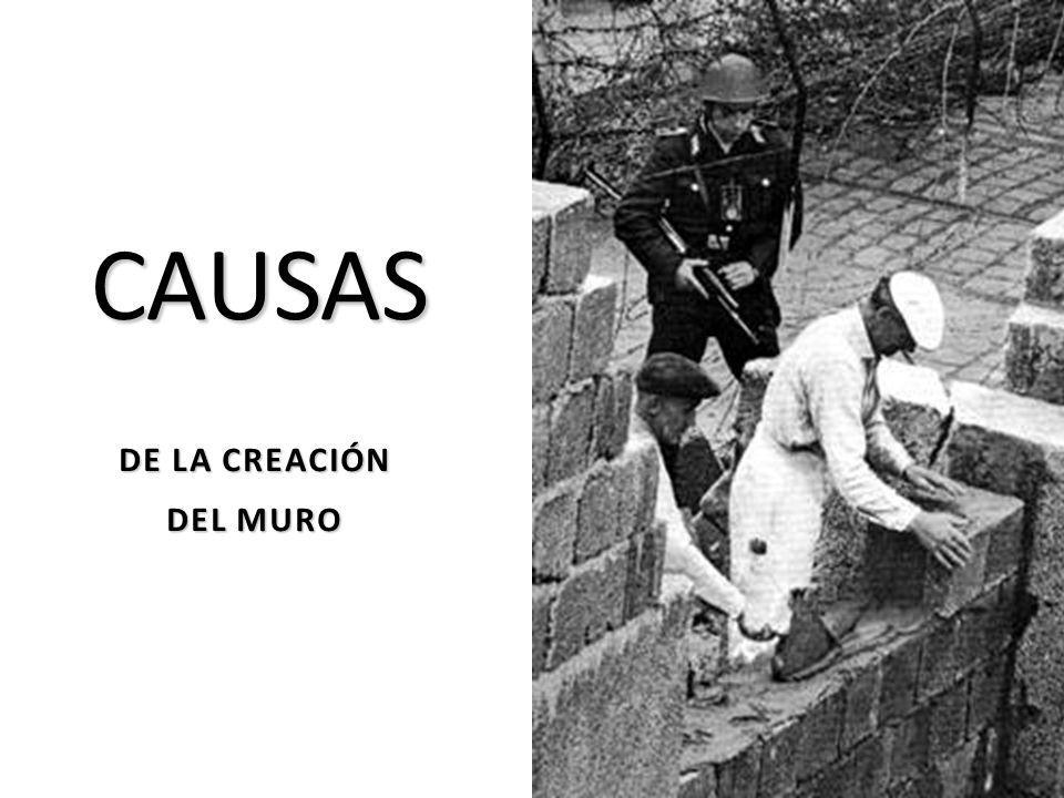 CAUSAS DE LA CREACIÓN DEL MURO