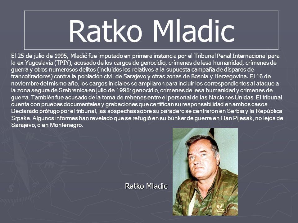 El 25 de julio de 1995, Mladić fue imputado en primera instancia por el Tribunal Penal Internacional para la ex Yugoslavia (TPIY), acusado de los carg