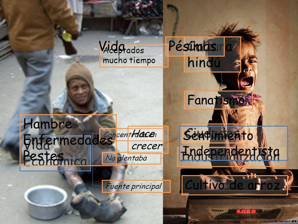Abusos Pobreza Esperanza Calidad Aceptados mucho tiempo Cultura hindú Fanatismo Vida Económica Concentrada en Ciudades No alentaba Fuente principal In