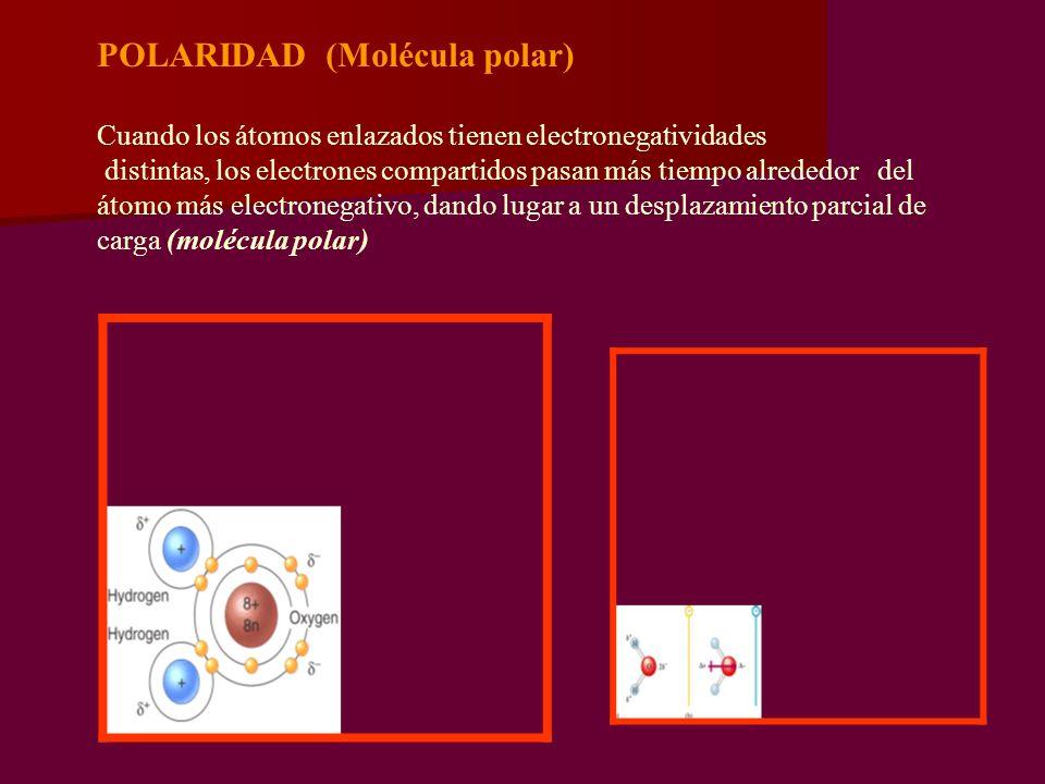 POLARIDAD (Molécula polar) Cuando los átomos enlazados tienen electronegatividades distintas, los electrones compartidos pasan más tiempo alrededor de