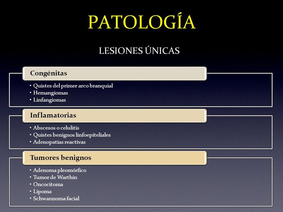 PATOLOGÍA LESIONES ÚNICAS Quistes del primer arco branquial Hemangiomas Linfangiomas Congénitas Abscesos o celulitis Quistes benignos linfoepiteliales