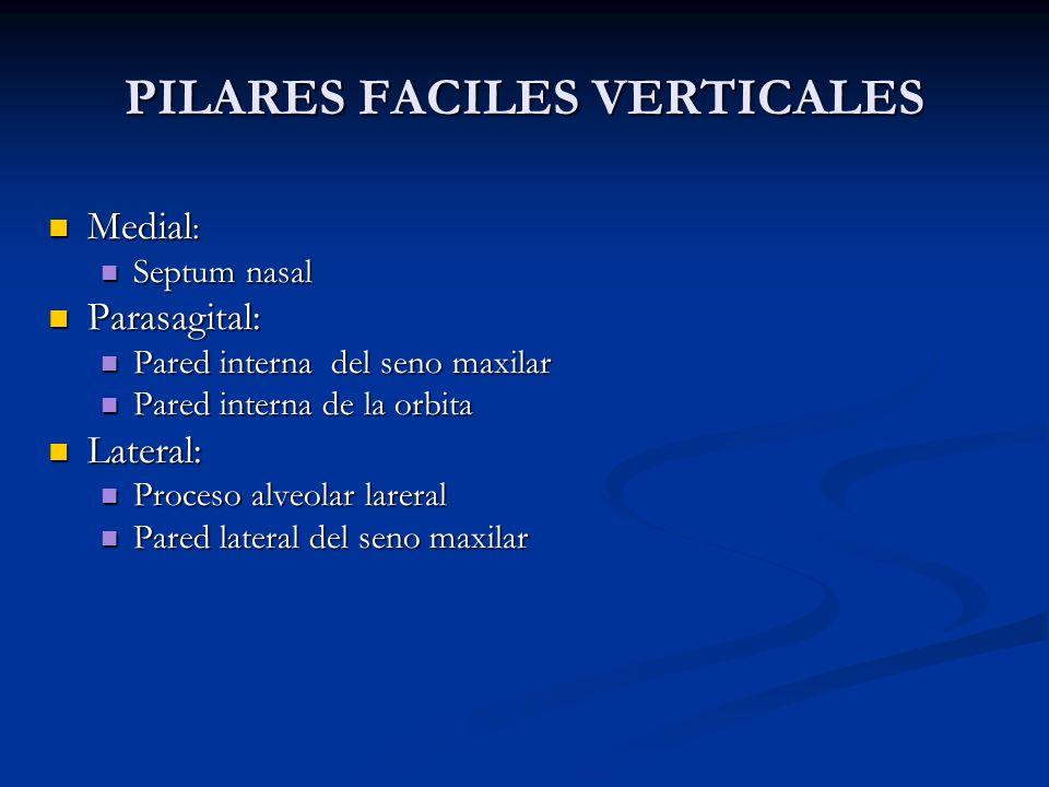 PILARES FACILES VERTICALES Medial : Medial : Septum nasal Septum nasal Parasagital: Parasagital: Pared interna del seno maxilar Pared interna del seno