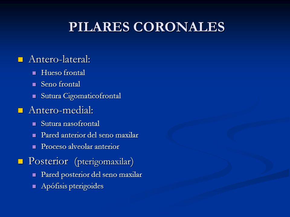 PILARES CORONALES PILARES CORONALES Antero-lateral: Antero-lateral: Hueso frontal Hueso frontal Seno frontal Seno frontal Sutura Cigomaticofrontal Sut