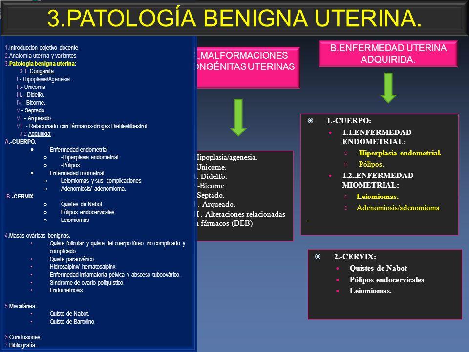 1.-CUERPO: 1.1.ENFERMEDAD ENDOMETRIAL: -Hiperplasia endometrial. -Pólipos. 1.2..ENFERMEDAD MIOMETRIAL: Leiomiomas. Adenomiosis/adenomioma.. 2.-CERVIX: