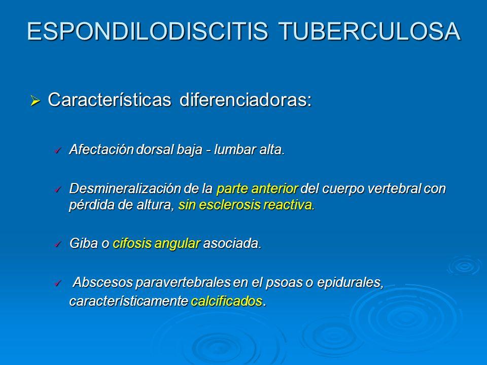 ESPONDILODISCITIS TUBERCULOSA Características diferenciadoras: Características diferenciadoras: Afectación dorsal baja - lumbar alta. Afectación dorsa