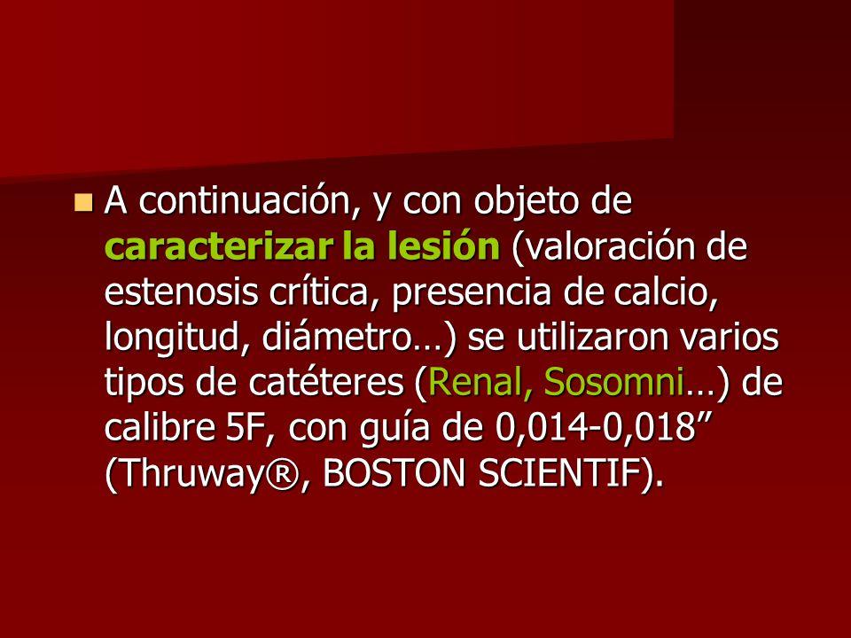 A continuación, y con objeto de caracterizar la lesión (valoración de estenosis crítica, presencia de calcio, longitud, diámetro…) se utilizaron vario