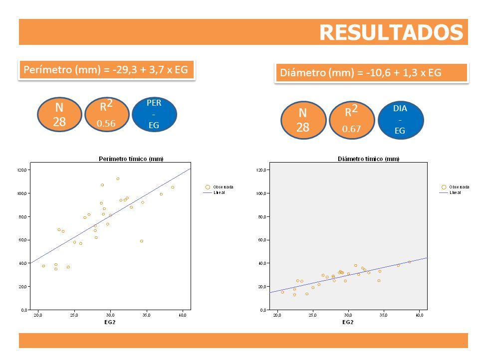 RESULTADOS PER - EG R 2 0.56 N 28 Perímetro (mm) = -29,3 + 3,7 x EG DIA - EG R 2 0.67 N 28 Diámetro (mm) = -10,6 + 1,3 x EG