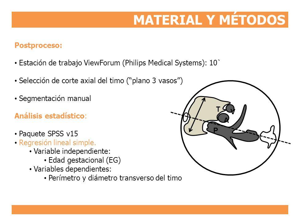 MATERIAL Y MÉTODOS Postproceso: Estación de trabajo ViewForum (Philips Medical Systems): 10` Selección de corte axial del timo (plano 3 vasos) Segment