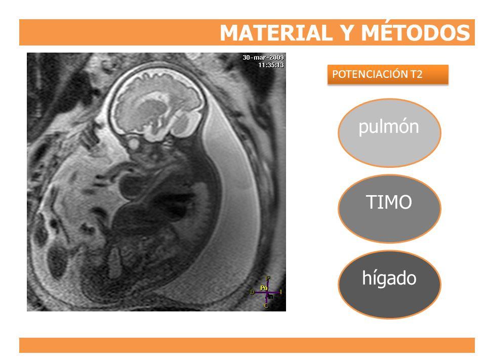 MATERIAL Y MÉTODOS pulmón TIMO hígado POTENCIACIÓN T2