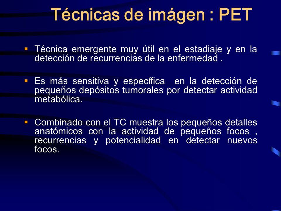 Técnicas de imágen : PET Técnica emergente muy útil en el estadiaje y en la detección de recurrencias de la enfermedad. Es más sensitiva y específica
