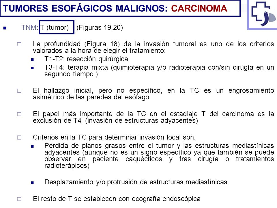 TNM: T (tumor) (Figuras 19,20) La profundidad (Figura 18) de la invasión tumoral es uno de los criterios valorados a la hora de elegir el tratamiento: