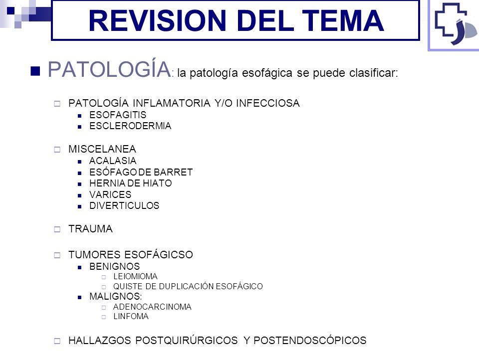 PATOLOGÍA : la patología esofágica se puede clasificar: PATOLOGÍA INFLAMATORIA Y/O INFECCIOSA ESOFAGITIS ESCLERODERMIA MISCELANEA ACALASIA ESÓFAGO DE
