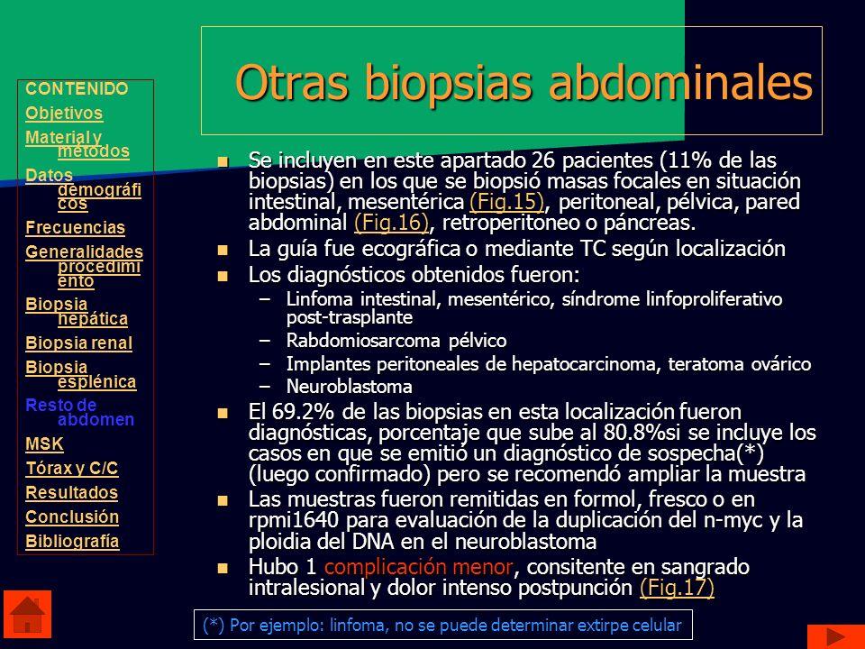 Otras biopsias abdominales Se incluyen en este apartado 26 pacientes (11% de las biopsias) en los que se biopsió masas focales en situación intestinal