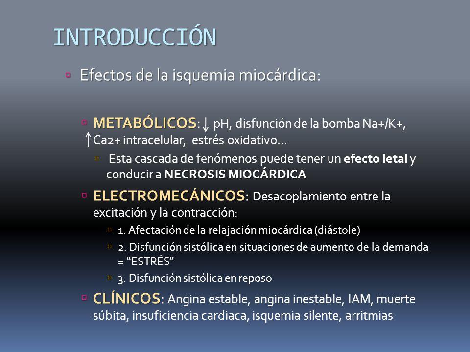 INTRODUCCIÓN Efectos de la isquemia miocárdica Efectos de la isquemia miocárdica: METABÓLICOS METABÓLICOS: pH, disfunción de la bomba Na+/K+, Ca2+ intracelular, estrés oxidativo… NECROSIS MIOCÁRDICA Esta cascada de fenómenos puede tener un efecto letal y conducir a NECROSIS MIOCÁRDICA ELECTROMECÁNICOS ELECTROMECÁNICOS: Desacoplamiento entre la excitación y la contracción: 1.