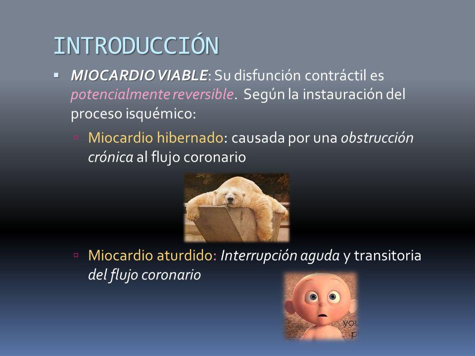 INTRODUCCIÓN MIOCARDIO VIABLE MIOCARDIO VIABLE: Su disfunción contráctil es potencialmente reversible. Según la instauración del proceso isquémico: Mi
