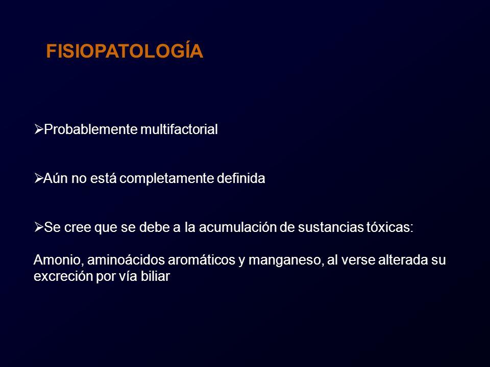 FIGURA 6: OTROS HALLAZGOS : Paciente de 62 años con DHCA. Hospital Infanta Cristina (Badajoz)