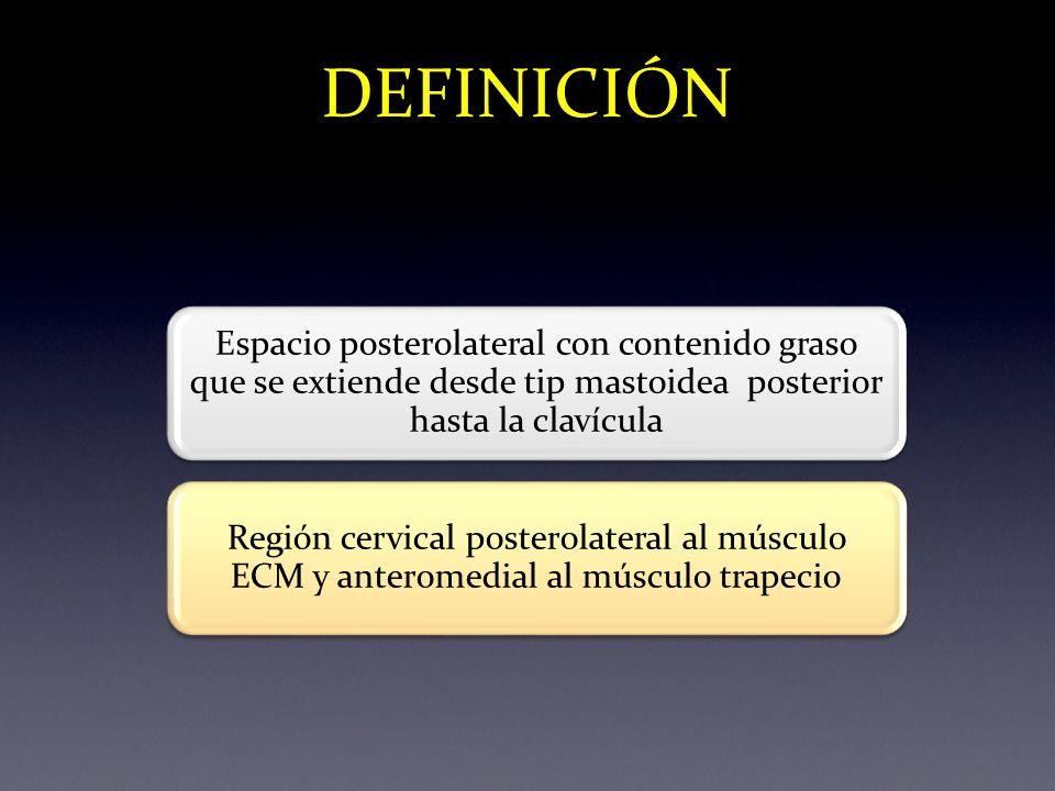 DEFINICIÓN Espacio posterolateral con contenido graso que se extiende desde tip mastoidea posterior hasta la clavícula Región cervical posterolateral