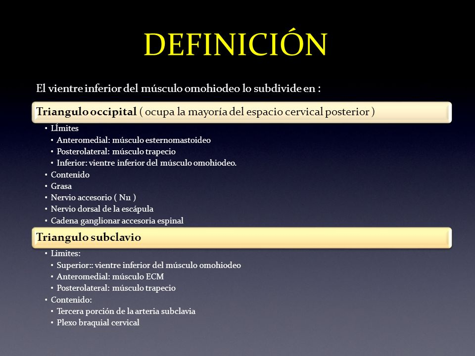 DEFINICIÓN El vientre inferior del músculo omohiodeo lo subdivide en :Triangulo occipital ( ocupa la mayoría del espacio cervical posterior ) LÍmites