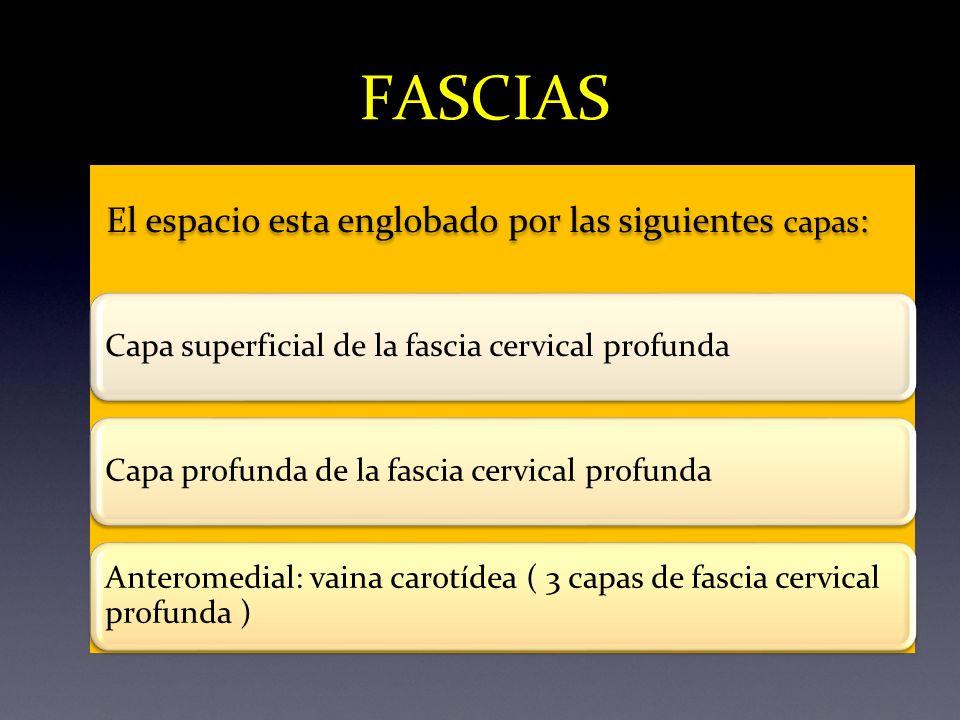 El espacio esta englobado por las siguientes capas : Capa superficial de la fascia cervical profundaCapa profunda de la fascia cervical profunda Anter