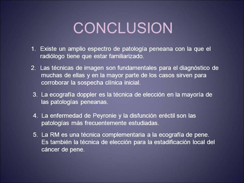 CONCLUSION 1.Existe un amplio espectro de patología peneana con la que el radiólogo tiene que estar familiarizado.